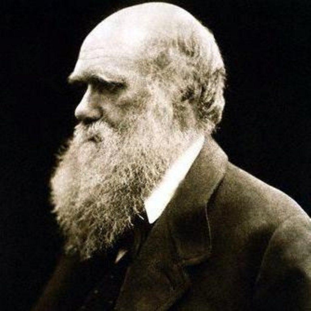 Charles Darwin revolutionised how mankind views itself