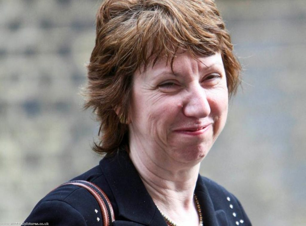 Baroness Cathy Ashton has asked for the largest EU budget hike. Photo: www.politicalpictures.co.uk