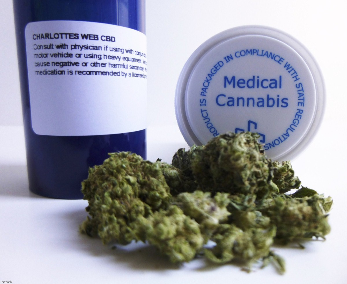 """""""It is a scandal of huge proportions that our government keeps delivering a message on medicinal cannabis which is false."""""""