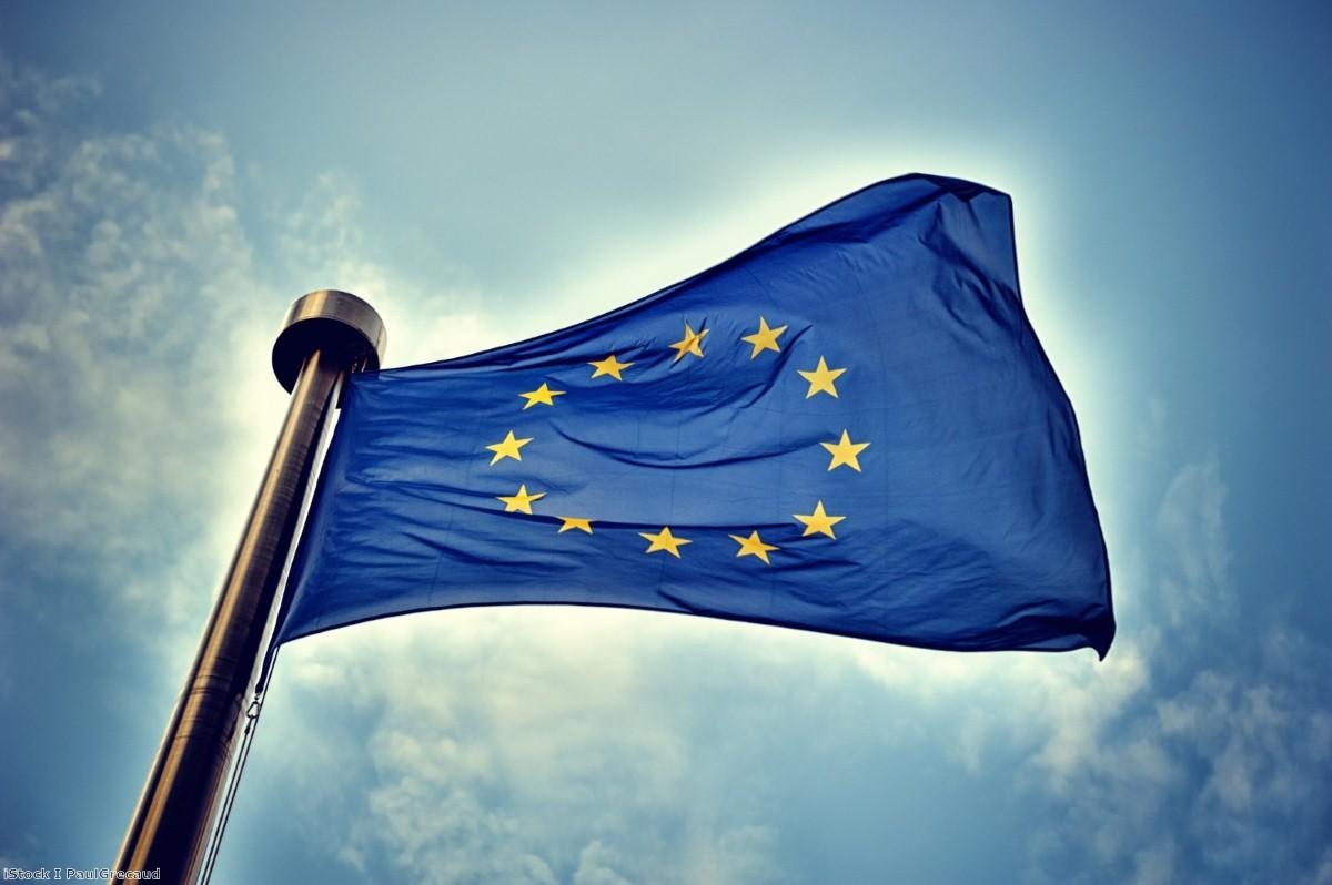 Flying the flag: People rarely pay attention to MEPs, but they have influential political roles