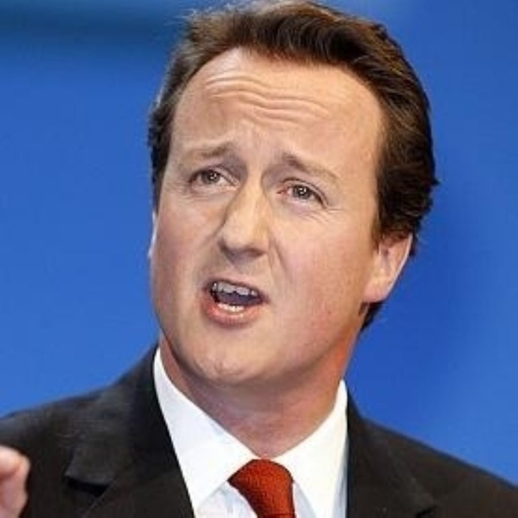 A failure of vision and a failure of financing, Cameron says