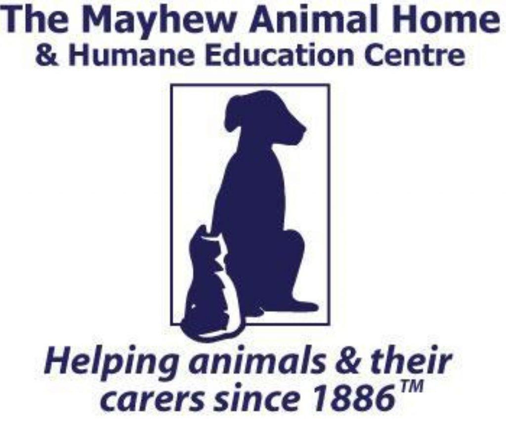Dog control legislation: Recommendations