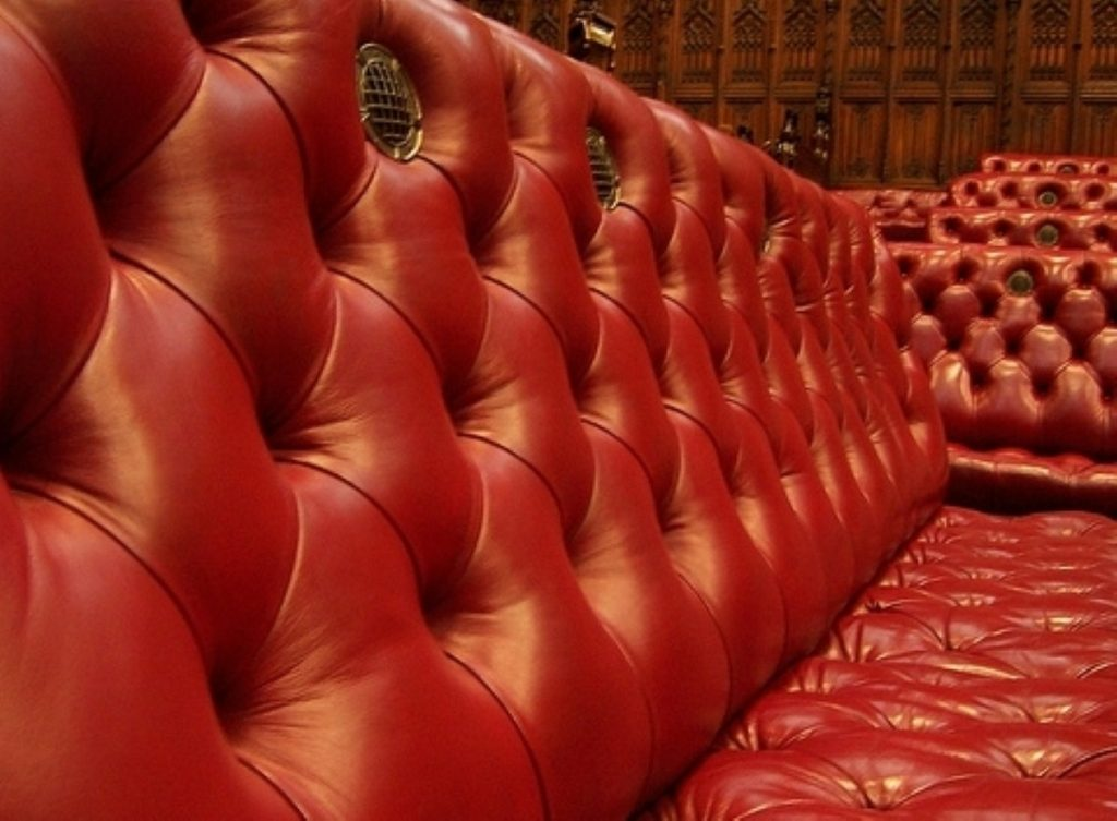 Seeing red? Lords fought back against government amendments yesterday